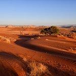 Foto de Tsondab Valley Scenic Reserve