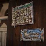 Photo de Orchid Corner B&B