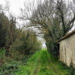 Paisaje del entorno. esta dentro del Parque Natural del Montgrí, Illes Medes i Baix Ter