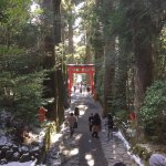 Photo of Hakone Shrine / Kuzuryu Shrine Singu