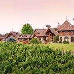Vineyard & Estate House