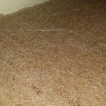 Tatty carpet