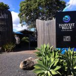 Harvest Blue Cafe resmi