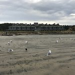 View of the inn from the beach at low tide.