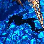 Photo de Ocean Rider Seahorse Farm