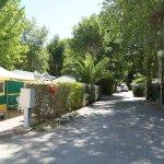 Photo of Camping les Mimosas