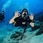 Photo de Flip Flop Divers