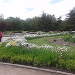 Photo of Salgirka City Park