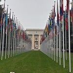 UNOG - Palais des Nations Foto