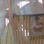 Foto de Parque Acuático Bajo Techo Fallsview