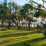 Morning at Rosalie Bay