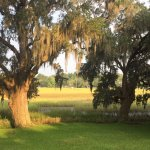 Photo de Plantation Oaks Inn