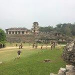 Palenque ruinas Foto