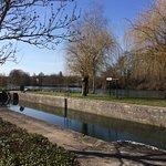 Photo de Chateau la Mothe Charente
