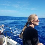 On the open seas! My wife looks out into the waters for whales! We found several that day!