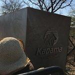 Kapama Southern Camp Foto