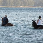 Enjoying horse surfing with my guide friend and his mount the mare Natalie