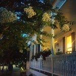 Pecan Tree Inn Foto