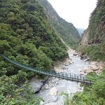 bridge over river in national park