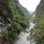 river and lush greenery in national park