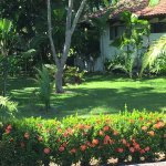 Hotel Villas Playa Samara Photo
