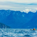 Kayaker in awe of the Coast Mountains of Desolation Sound