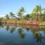 Photo of Grand Palladium Colonial Resort & Spa