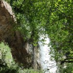 Lush vegetation around the falls