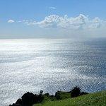 Grey's Island Excursions Foto
