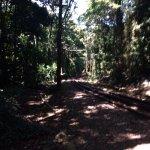 Parque Lage Foto