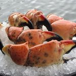 Florida Stone Crab (available 10/15-5/15