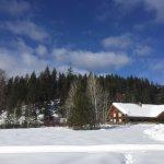 Photo de Mountain Springs Lodge Sleigh Rides