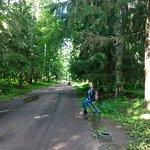 Photo de Palais et parc de Pavlovsk