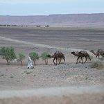 Foto de Itrane Sahara