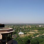 Photo of Flying Fox Neemrana