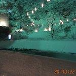 Foto de Hotel Ogawa