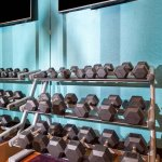 Fitness Center - Free Weights