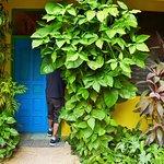 Hostel Candelaria Foto