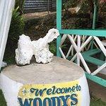 Photo de Woody's Low Bridge Place