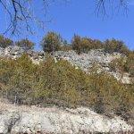Cliffs behind the Spring