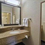 Foto de SpringHill Suites Detroit Southfield