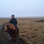 Riding Stútor the Icelandic Horse in Hella at Ice Events in February!