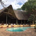 Photo de Chobe Safari Lodge