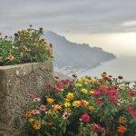 Gorgeous varieties of flowers