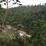 Gaia Riverlodge Foto