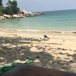Thongtapan Resort Bild