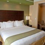 Holiday Inn Express Hotel & Suites Lansing-Dimondale