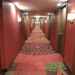 I want a hotel with a short skirt and a long hallway!