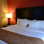 Comfort Suites At WestGate Mall Bild