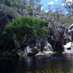 Gorgeous creek on one of the bush walking tracks